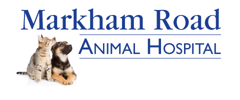 Markham Road Animal Hospital